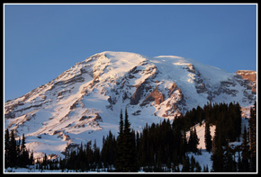 Late Afternoon Light On Mt. Raiinier From Paradise