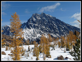 Larch Frame Mt. Stuart